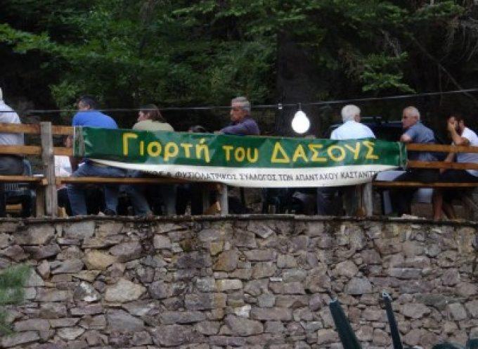 Γιορτή του Δάσους στην Καστάνιτσα