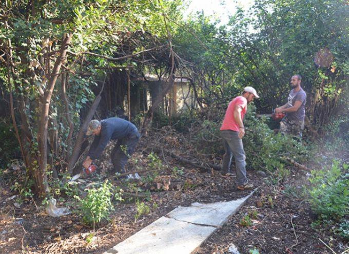 Καθαρισμός οικοπέδων από το Δήμο Τρίπολης με εισαγγελική εντολή
