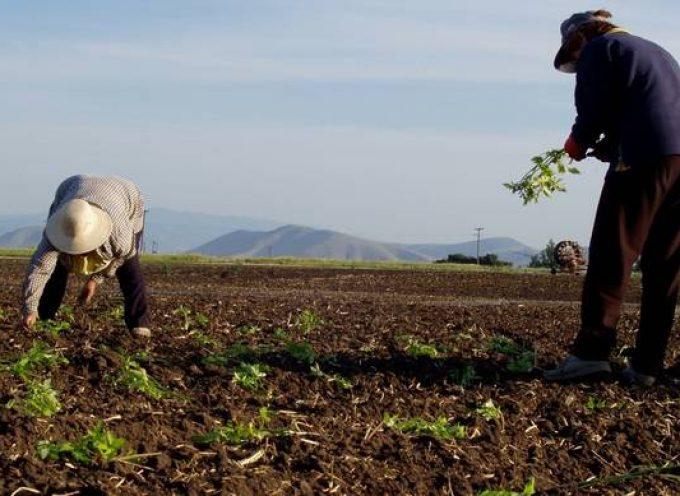 Eνίσχυση 14.000 ευρώ για αγρότες χαμηλού εισοδήματος