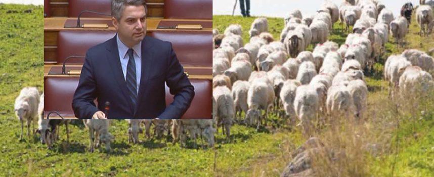 Οδ. Κωνσταντινόπουλος: Η πτώση της τιμής του γάλακτος εξαιτίας των ελληνοποιήσεων καταστρέφουν τους κτηνοτρόφους της Αρκαδίας