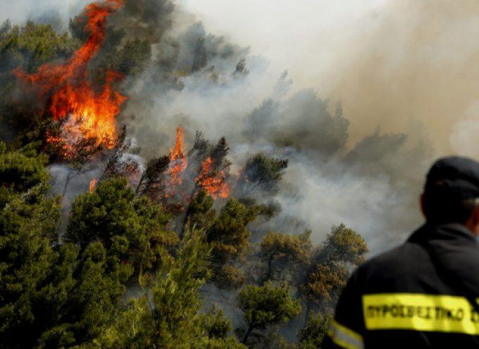 Φωτιά στα Κάτω Δολιανά