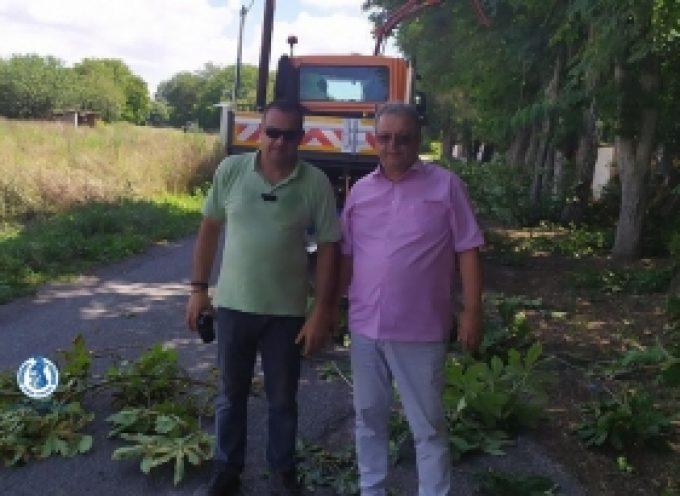 Εργασίες καθαρισμού βλάστησης σε δρόμους της Δ.Ε. Τεγέας (pics)