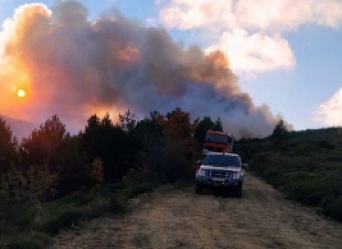 Φορέας Διαχείρισης Πάρνωνα: Από αγροτικές εργασίες ξέσπασε η φωτιά στον Αγio Πέτρο Κυνουρίας